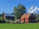 Red Barn in the Hood Valley, Mt Hood, Oregon, USA Photographic Print by Chuck Haney