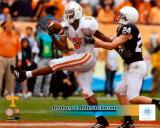 Robert Meachem University of Tennessee Volunteers; 2007 Action Photo