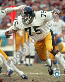 Joe Greene Photo