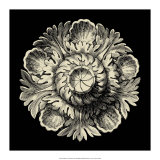 Black and Tan Rosette III Prints