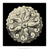 Black and Tan Rosette II Giclee Print