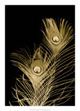 Plumes d'Or II Giclee Print by Jason Johnson