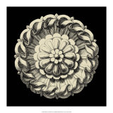 Black and Tan Rosette IV Giclee Print
