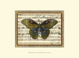 Butterfly Harmony I Posters