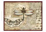 Poetic Dragonfly I Prints by Chariklia Zarris