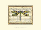 Dragonfly Harmony I - Poster