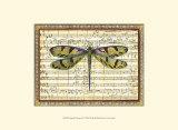 Armonía de libélula I Pósters
