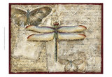 Poetic Dragonfly II Print by Chariklia Zarris