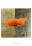 Orange Poppies VI Prints by Patty Q.