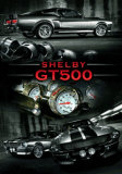Easton Chang GT500 Affiches