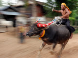A Cambodian Boy Rides on His Buffalo Through a Village Photographic Print