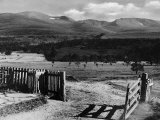 The Gateway to the Cairngorms Lochan Mountains Scotland Photographic Print