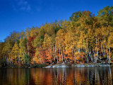 Autumn Scene in Northern Ontario, Canada Photographic Print