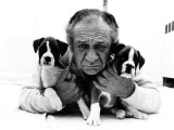 Sid James and His Boxers Dogs Bula and Beaut Fotografisk tryk