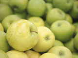 Pile of Green Apples Photographic Print