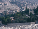 City on a Mountain - Israel, Jerusalem, Valley of Kidron, Garden of Gethsemane Photographic Print