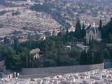 City on a Mountain - Israel, Jerusalem, Valley of Kidron, Garden of Gethsemane Photographic Print