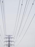 High-Tension Electrical Wires Photographic Print
