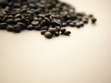 Pile of Coffee Beans Photographic Print