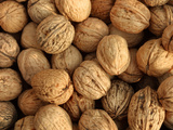Walnuts Photographic Print