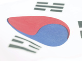 South Korean Flag Photographic Print