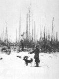 Kulik Stands Near a Section of Upright Charred Trees Southern Swamp Tunguska Photographic Print