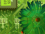 Computer Board with Flower Photographic Print
