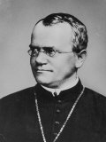 Gregor Johann Mendel, Photographic Print