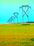 Power Lines Stretching Across Green and Red Field Photographic Print