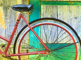Bicycle Seat and Wheel Against a Barn Wall Photographic Print