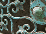 Ornate Metal Gate with Doorknob Photographic Print