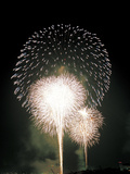 Fireworks in the Night Sky Photographic Print