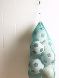 Net of Soccer Balls on Gym Wall Photographic Print