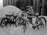 Bicyles at a University Near Sapporo, Hokkaido Photographic Print