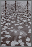 Three Worlds Framed Canvas Print by M. C. Escher