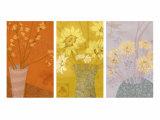 Floral Sketches Triptych Prints