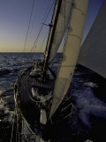 Sailing at Sunset, Ticonderoga Race Reprodukcja zdjęcia autor Michael Brown
