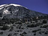 Kilimanjaro's Summit, Kilimanjaro Reprodukcja zdjęcia autor Michael Brown