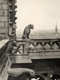 Detail of One of the Two Terraces with Monstrous Figures, Cathedral of Notre-Dame, Paris Photographic Print