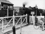 The Cambrian Coast Express Steam Locomotive Train at Llanbadarn Crossing Near Aberystwyth Wales Lámina fotográfica