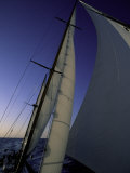 Sailing, Ticonderoga Race Photographic Print by Michael Brown