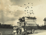 WWI: Soldiers Setting Free Some Carrier Pigeons, Northern France Photographie