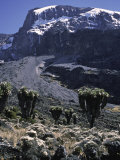 Desert Landscape with Mountain View, Kilimanjaro Photographic Print by Michael Brown