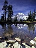 Mt. Rainier Reflected in Tarn, Mt. Rainier National Park, Washington, USA Fotografisk tryk af Jamie & Judy Wild