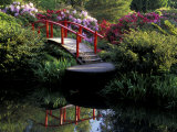 Moon Bridge and Pond in a Japanese Garden, Seattle, Washington, USA Photographic Print by Jamie & Judy Wild