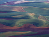 Steptoe Butte State Park, Washington, USA, Photographic Print by Gavriel Jecan