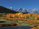 Mt. Moren, Oxbow Bend, Grand Tetons National Park, Wyoming, USA Fotodruck von Dee Ann Pederson