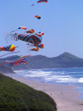 Kites Flying on the Oregon Coast, USA Photographic Print by Janis Miglavs