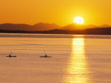 Kayaking at Sunset, San Juan Islands, Washington, USA Photographic Print by Stuart Westmoreland