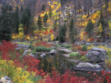 Wenatchee River and Fall Color, Tumwater Canyon, Washington, USA Fotografie-Druck von Jamie &amp; Judy Wild